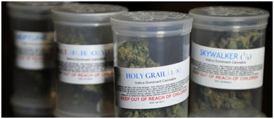 Quality Marijuana Storage Containers Advice for Medical Marijuana